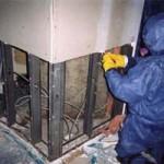 mold remediation phoenix