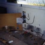 Mold Abatement in Buckeye, AZ